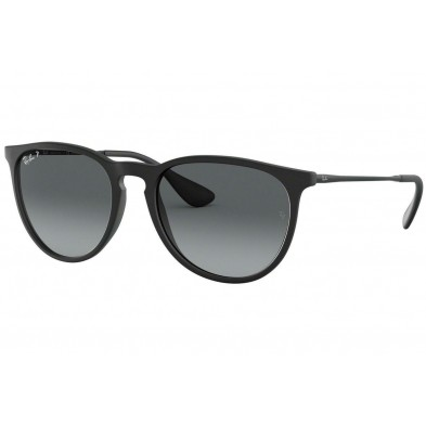 Ray Ban RB4171 Erika Polarized